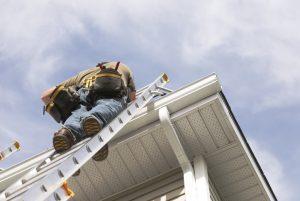 Roof Repairs in Naples
